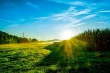 landscape sunny